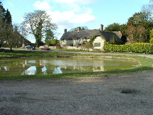 The pond at Ashmore